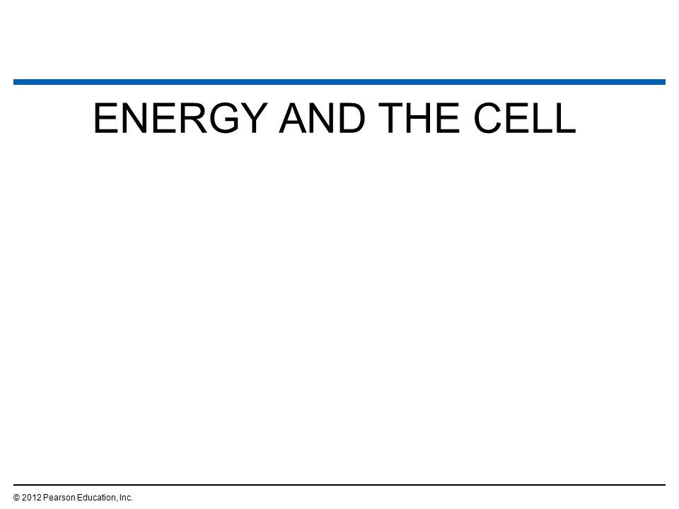 ENERGY AND THE CELL © 2012 Pearson Education, Inc. 17