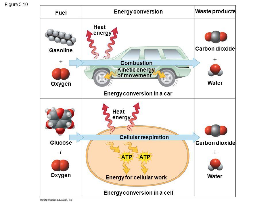 Kinetic energy of movement