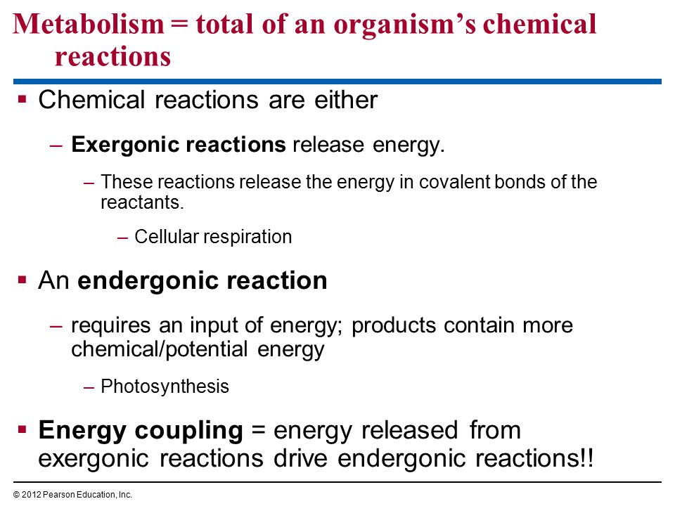 Metabolism = total of an organism's chemical reactions