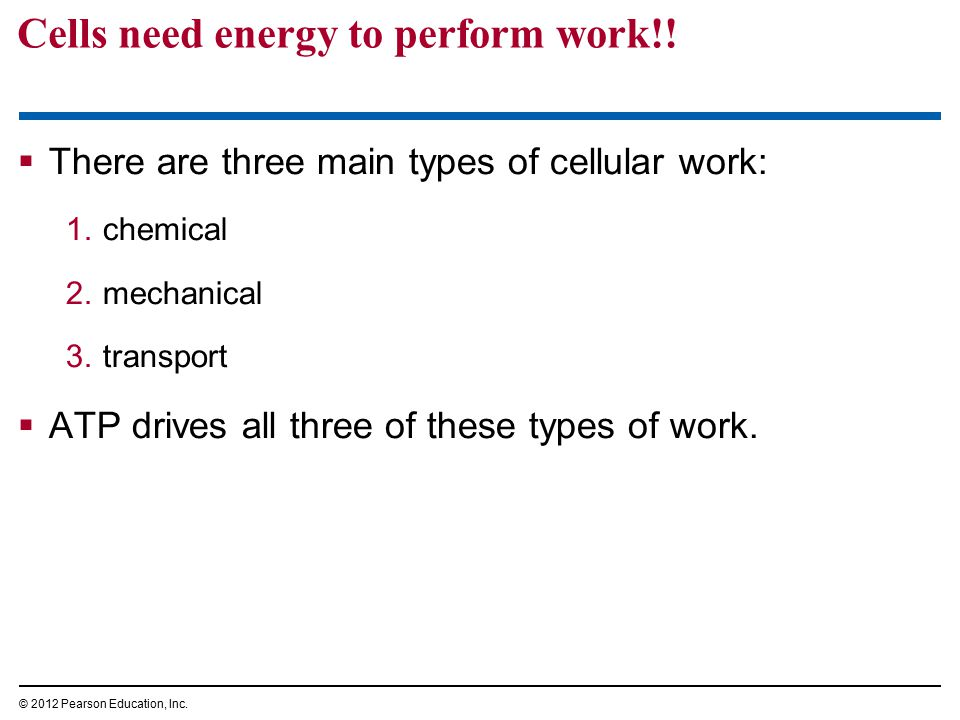 Cells need energy to perform work!!