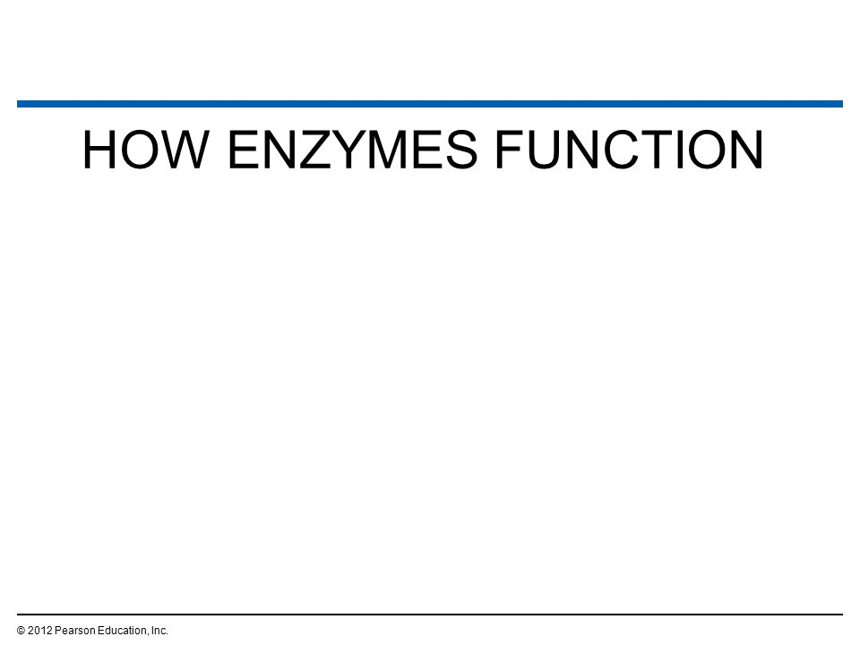 HOW ENZYMES FUNCTION © 2012 Pearson Education, Inc. 30