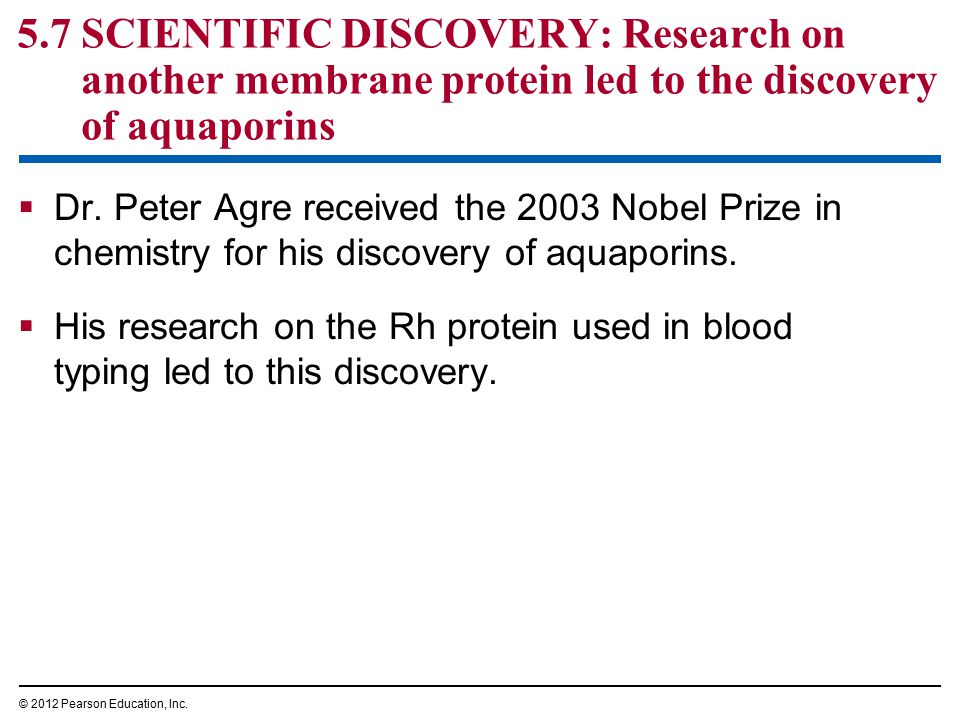 5.7 SCIENTIFIC DISCOVERY: Research on another membrane protein led to the discovery of aquaporins