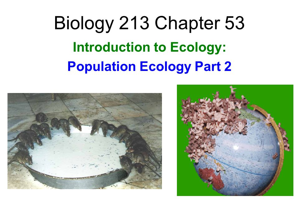 Introduction to Ecology: Population Ecology Part 2
