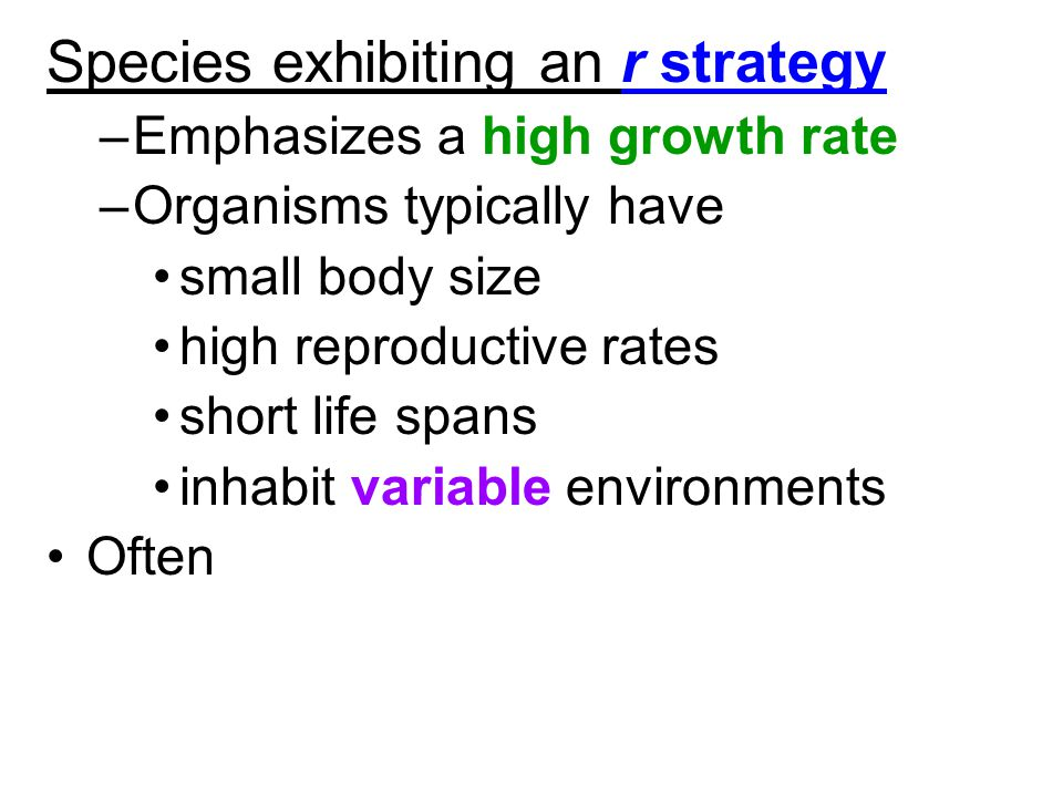 Species exhibiting an r strategy