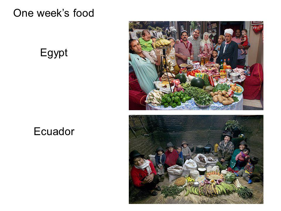 One week's food Egypt Ecuador
