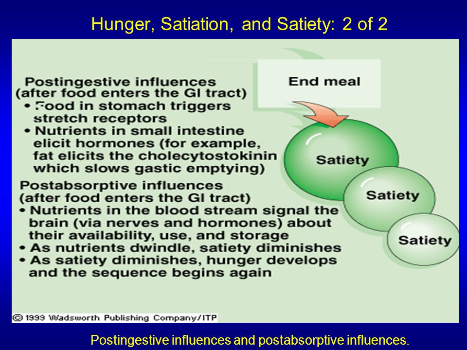 Hunger, Satiation, and Satiety: 2 of 2