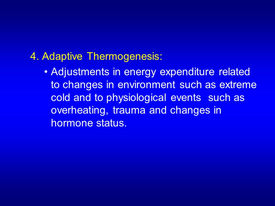 4. Adaptive Thermogenesis: