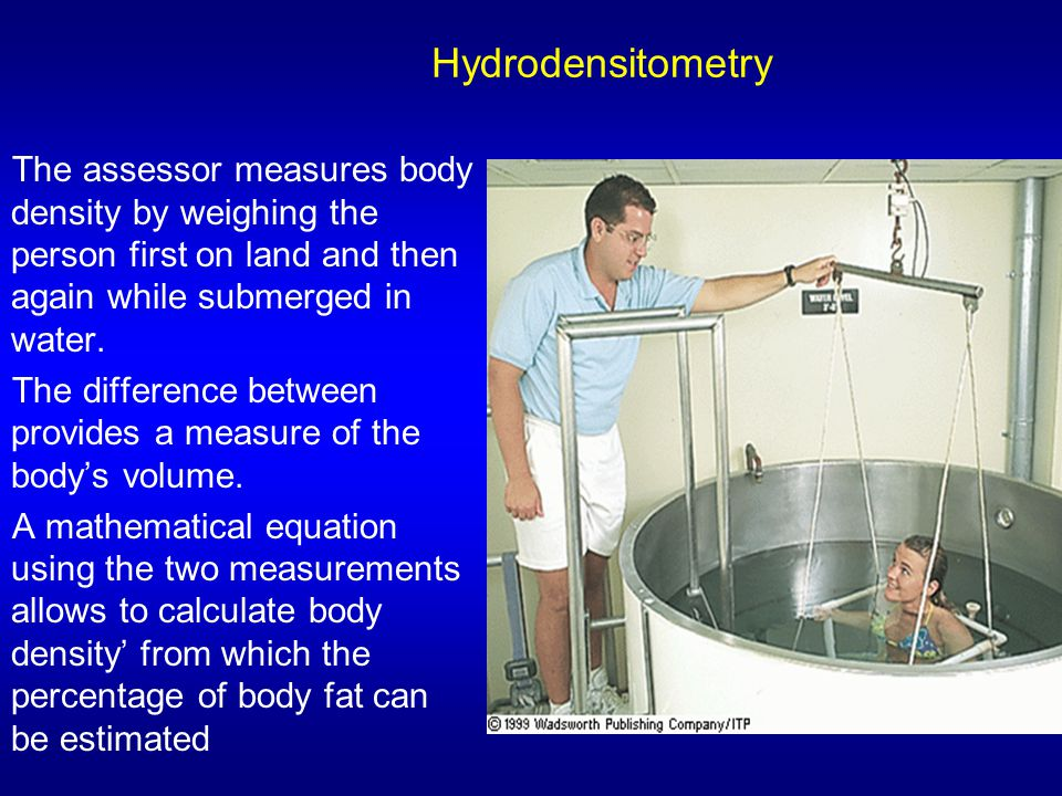 Hydrodensitometry The assessor measures body density by weighing the person first on land and then again while submerged in water.
