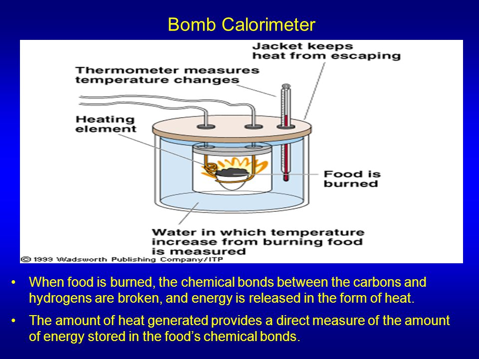 Bomb Calorimeter When food is burned, the chemical bonds between the carbons and hydrogens are broken, and energy is released in the form of heat.
