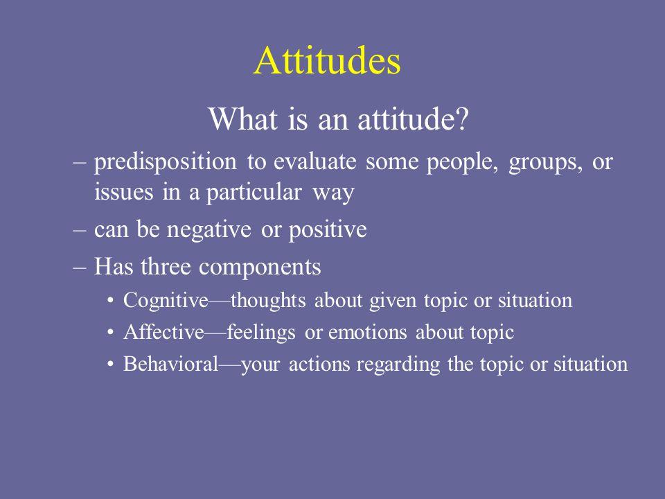 Attitudes What is an attitude