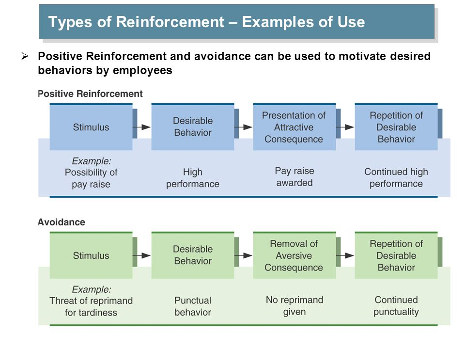 Types of Reinforcemene – Example of Use