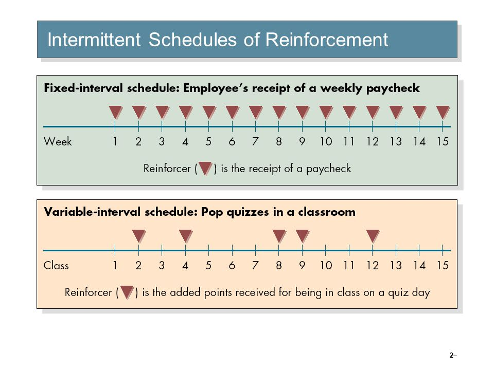 Intermittent Schedules of Reinforcement (cont'd)