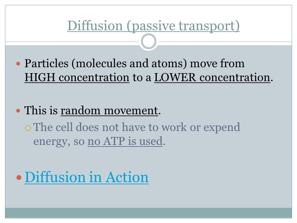 Diffusion (passive transport)