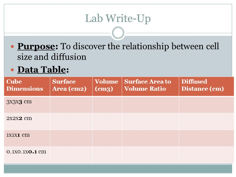 Lab Write-Up Purpose: To discover the relationship between cell size and diffusion. Data Table: Cube.