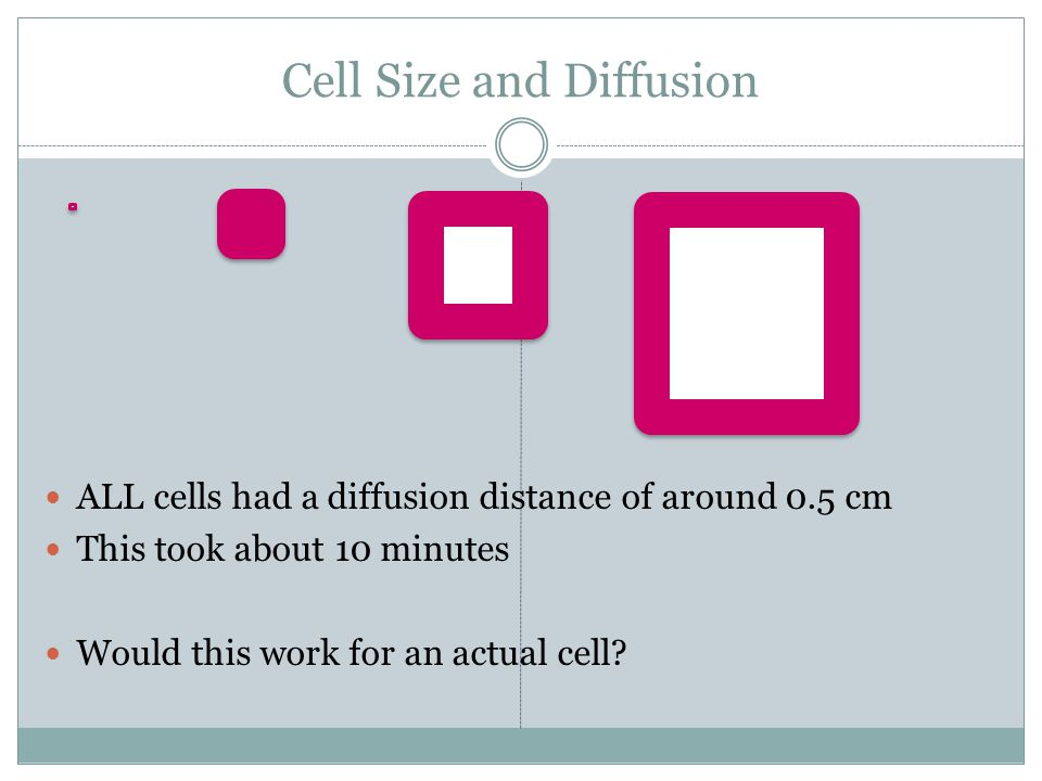 Cell Size and Diffusion