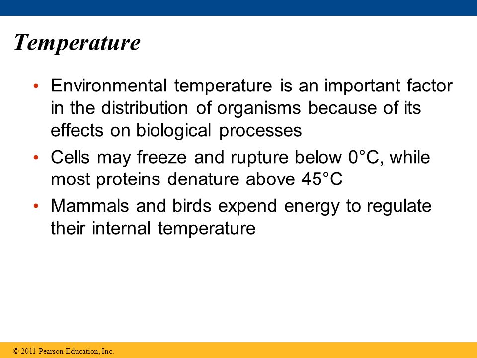 Temperature Environmental temperature is an important factor in the distribution of organisms because of its effects on biological processes.