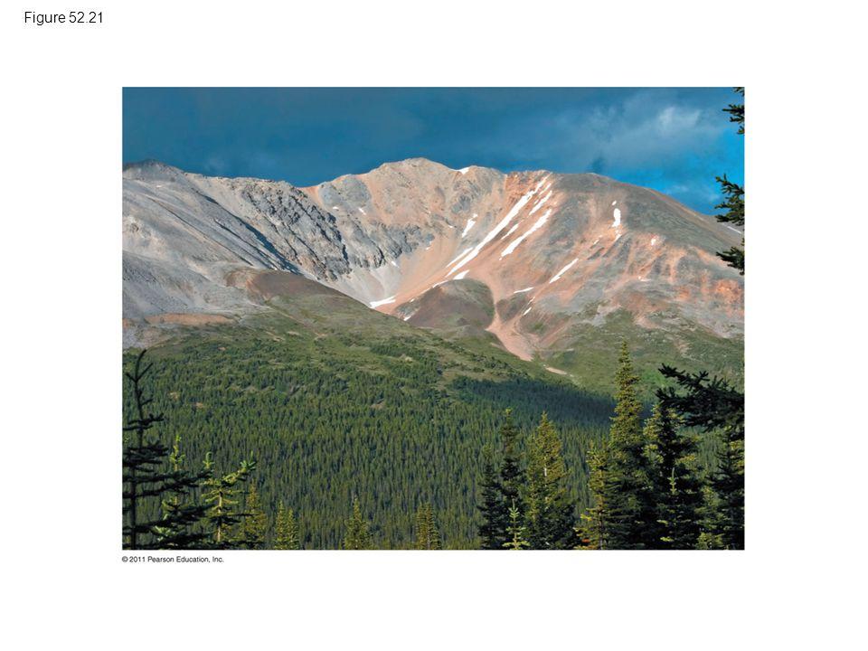 Figure 52.21 Figure 52.21 Alpine tree line in Banff National Park, Canada.