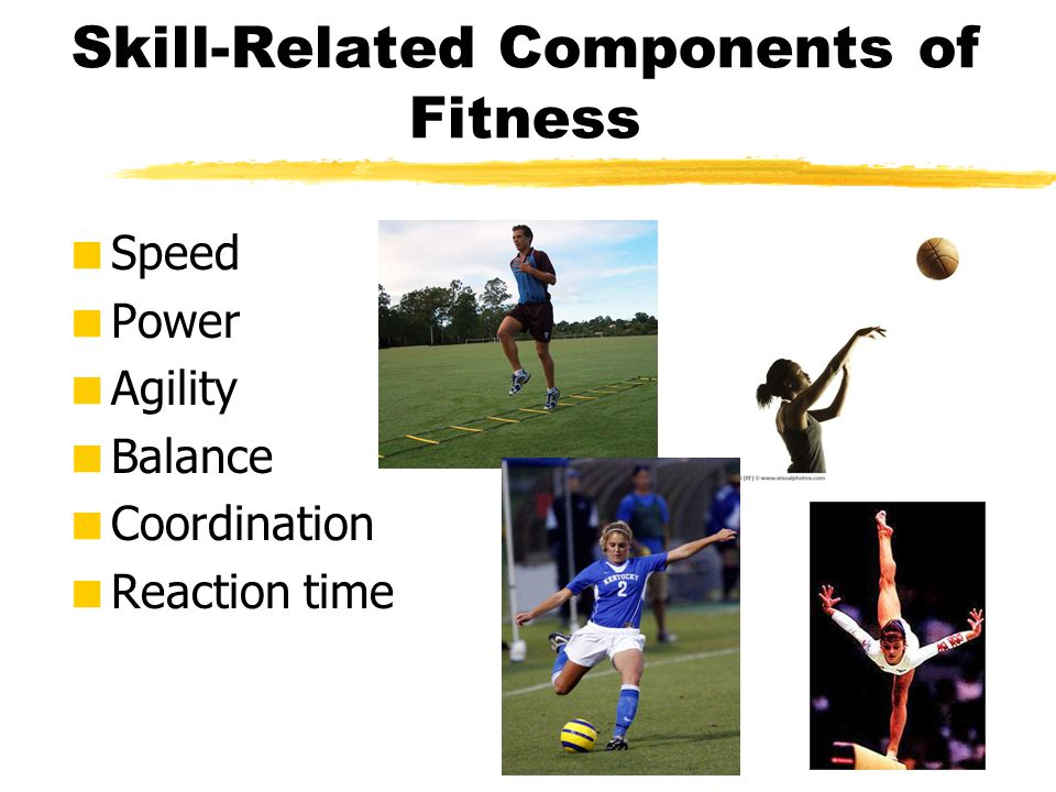 Skill-Related Components of Fitness