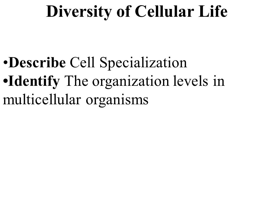 Diversity of Cellular Life