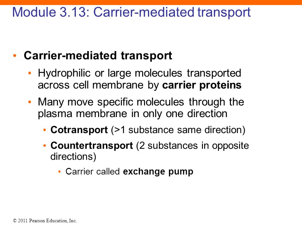 Module 3.13: Carrier-mediated transport