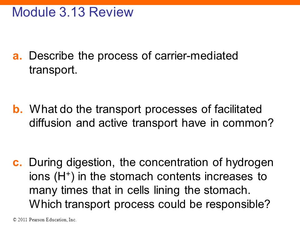 Module 3.13 Review a. Describe the process of carrier-mediated transport.