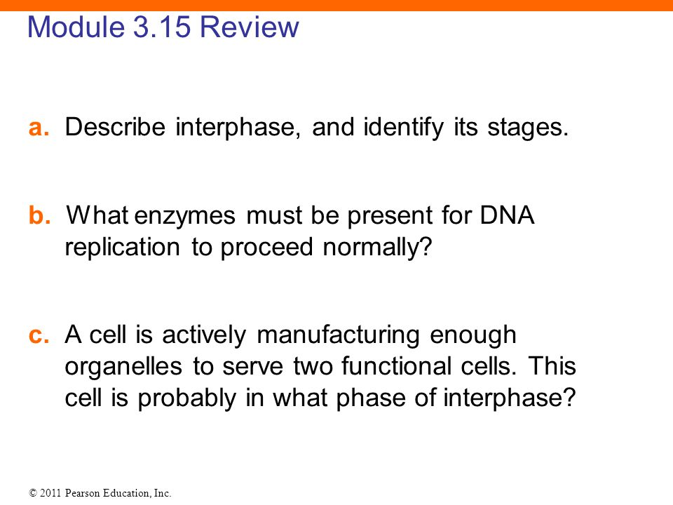 Module 3.15 Review a. Describe interphase, and identify its stages.