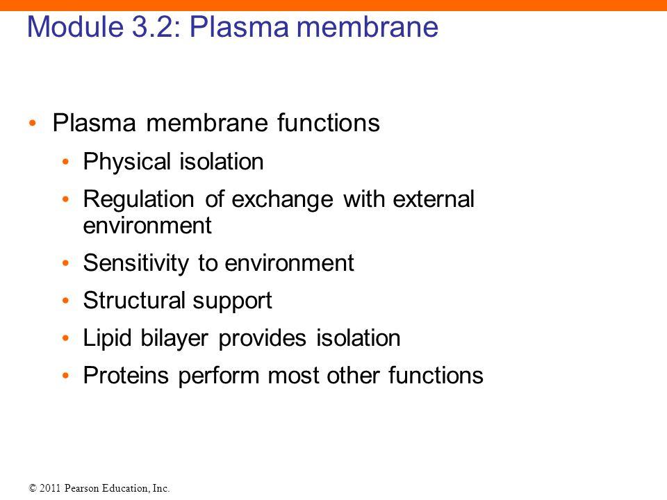 Module 3.2: Plasma membrane