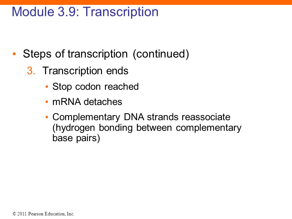 Module 3.9: Transcription
