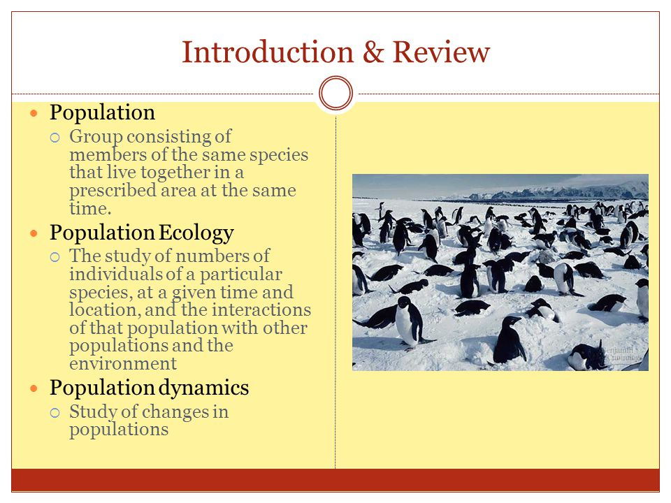 Introduction & Review Population Population Ecology