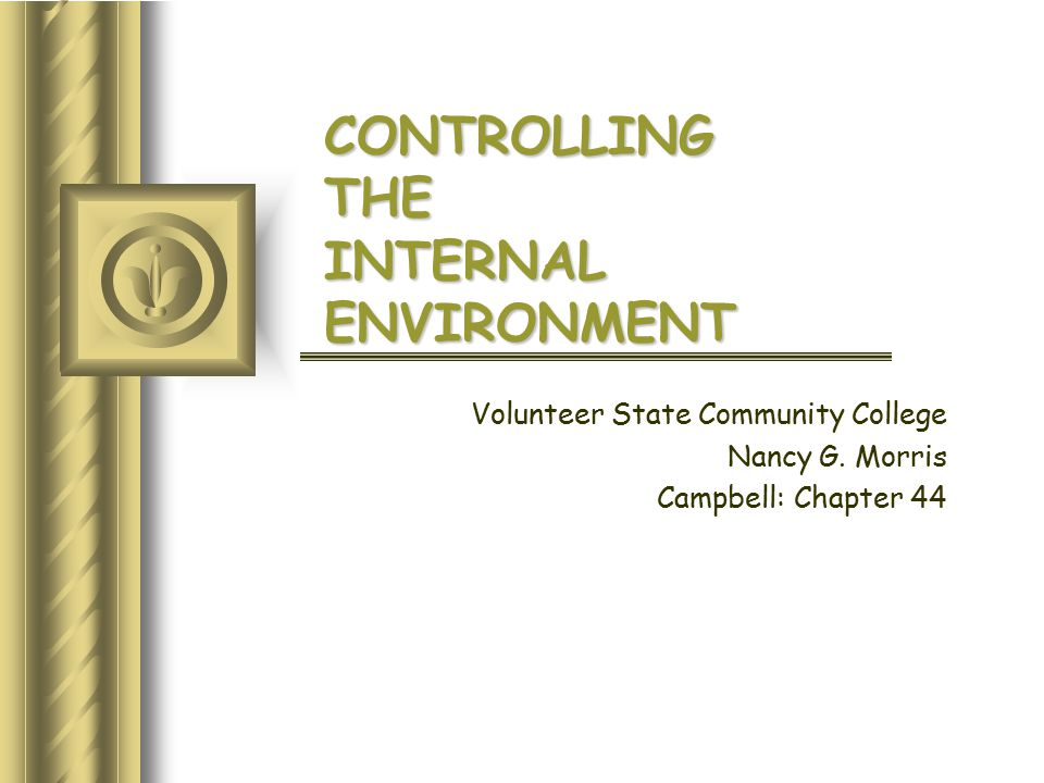 CONTROLLING THE INTERNAL ENVIRONMENT