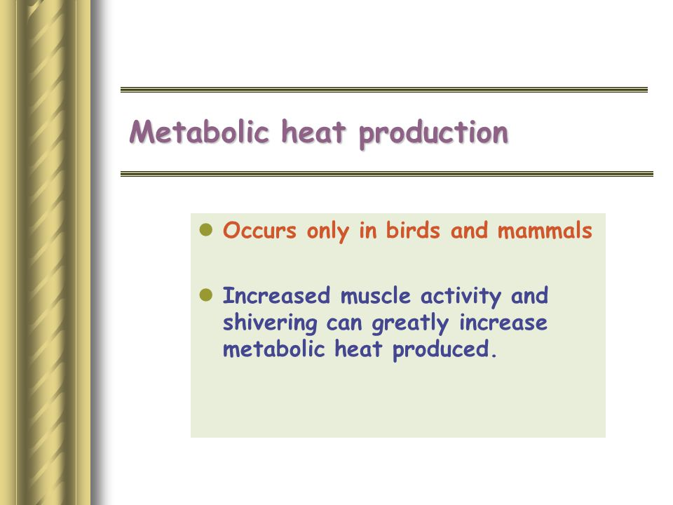 Metabolic heat production