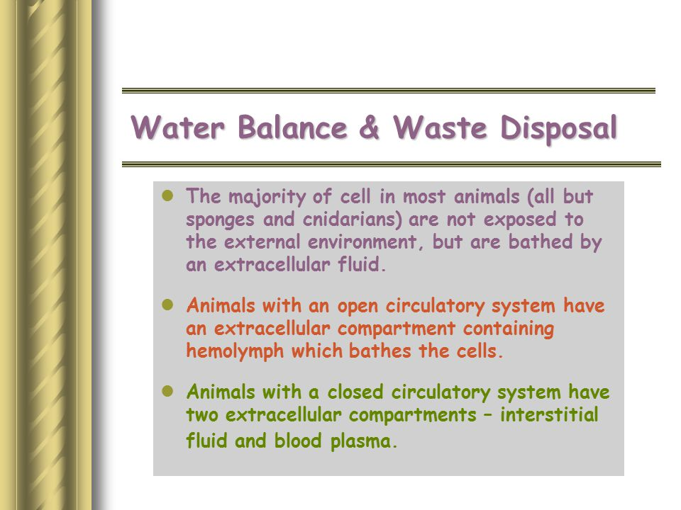 Water Balance & Waste Disposal