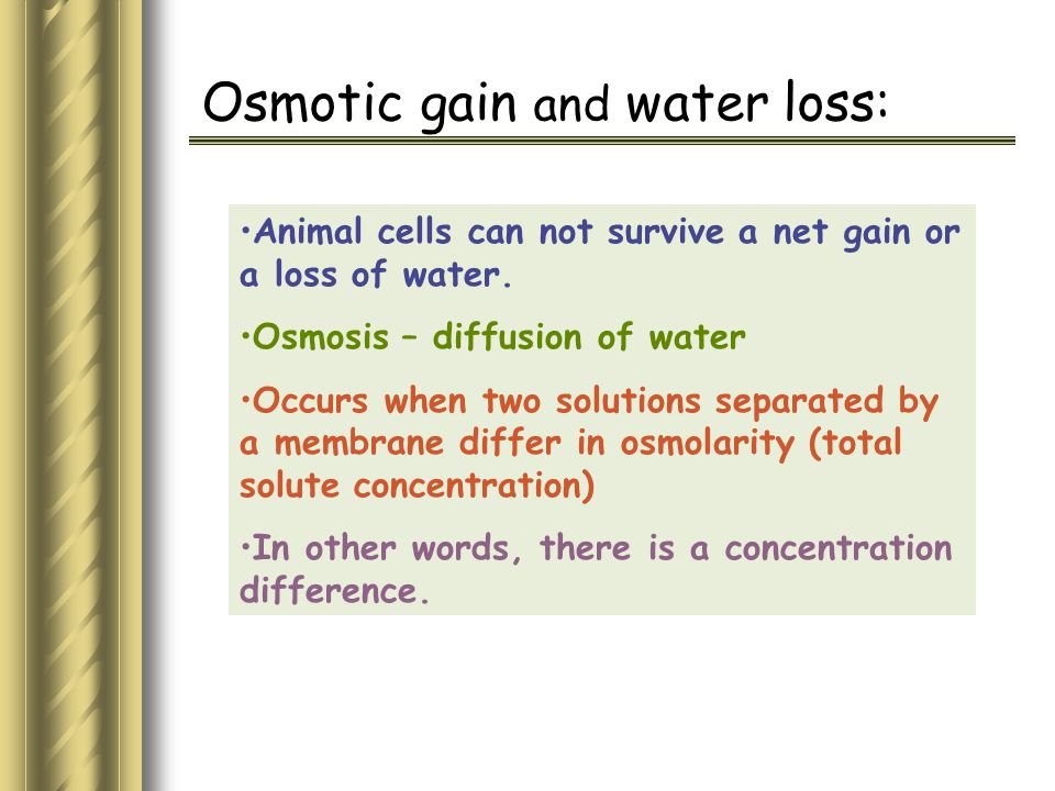 Osmotic gain and water loss: