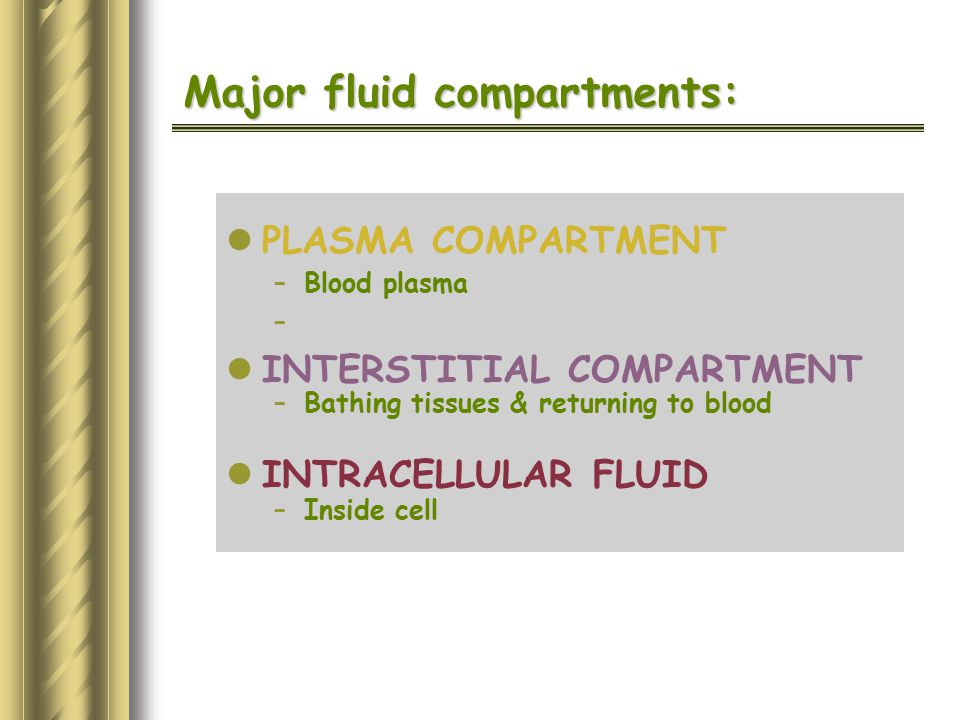 Major fluid compartments: