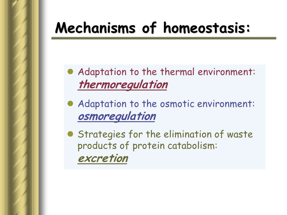 Mechanisms of homeostasis: