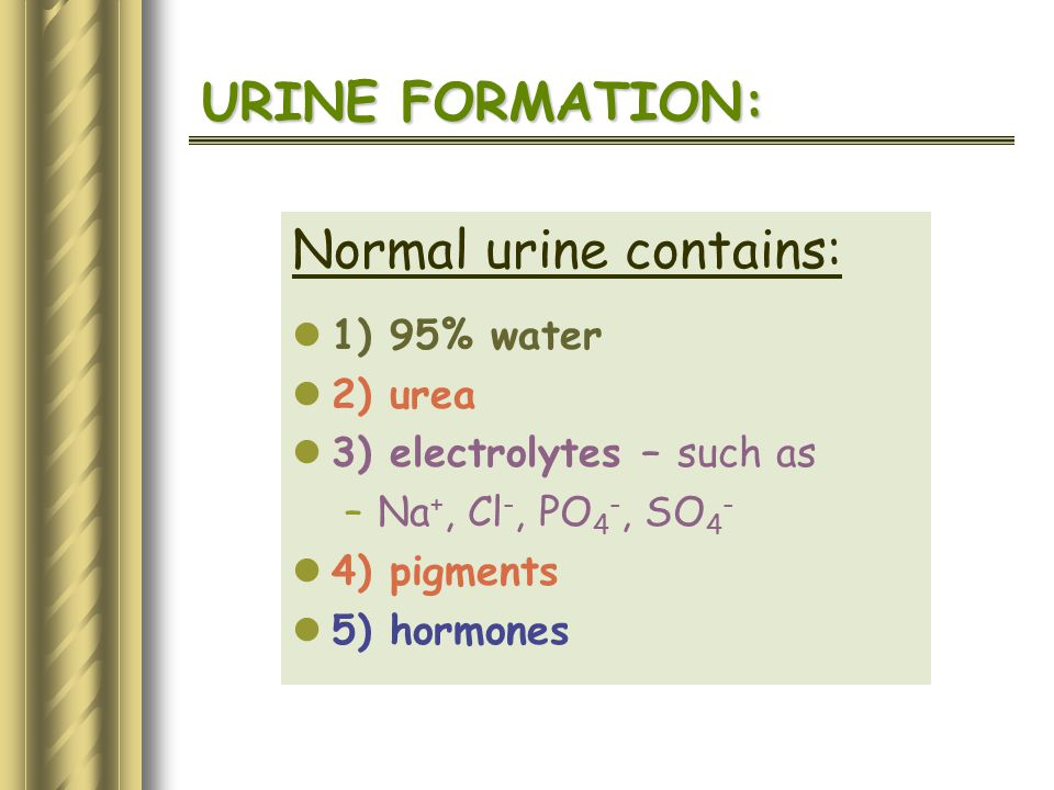 Normal urine contains: