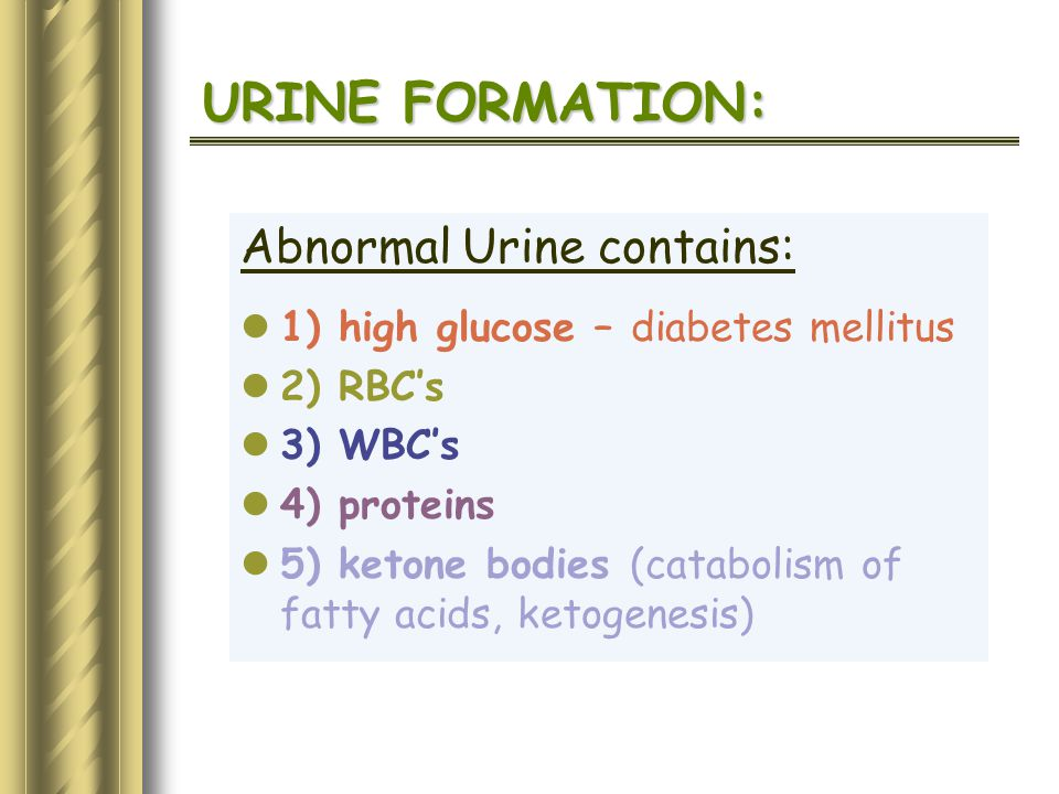 URINE FORMATION: Abnormal Urine contains: