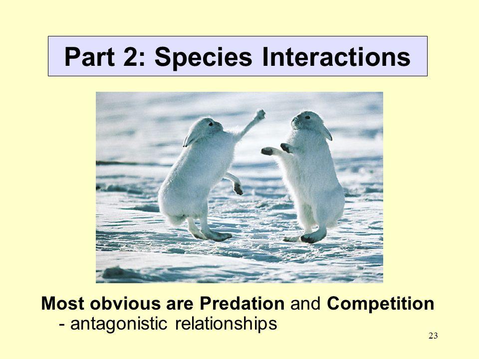 Part 2: Species Interactions