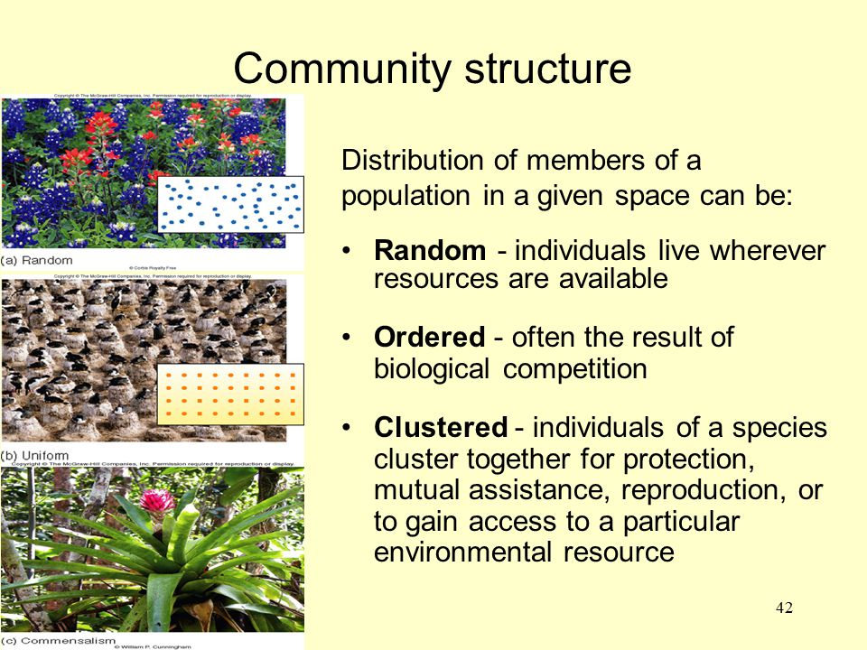 ADD FIG. 3.25 A-C Community structure Distribution of members of a