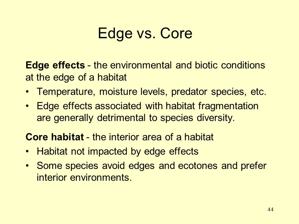 Edge vs. Core Edge effects - the environmental and biotic conditions