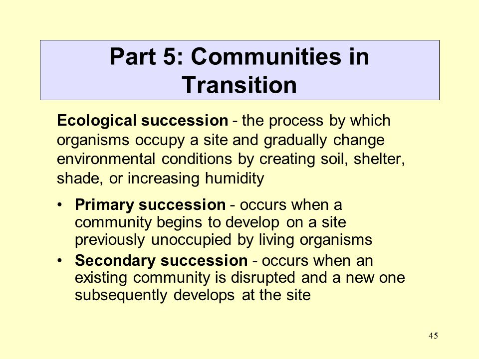 Part 5: Communities in Transition