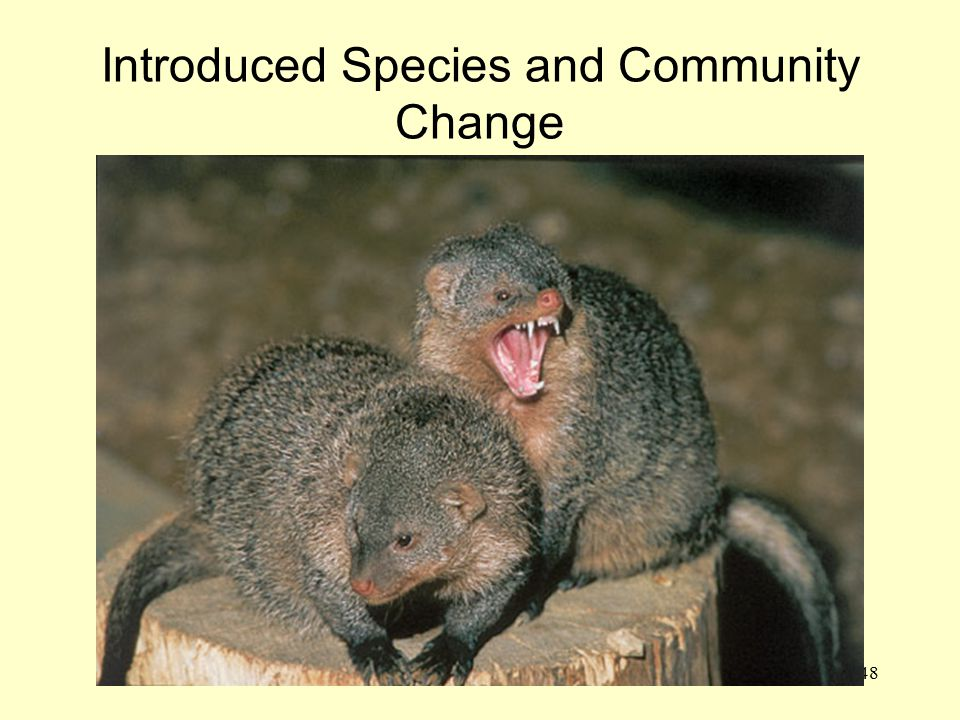 Introduced Species and Community Change