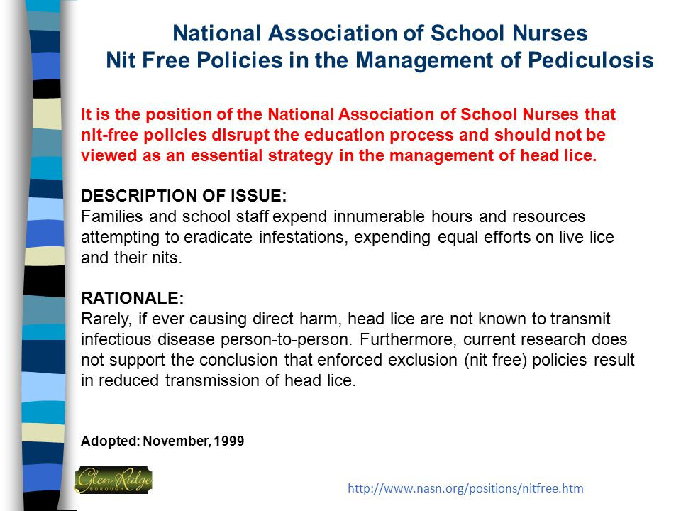 National Association of School Nurses Nit Free Policies in the Management of Pediculosis