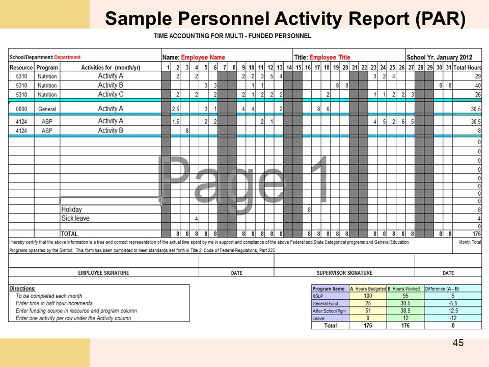 Sample Personnel Activity Report (PAR)