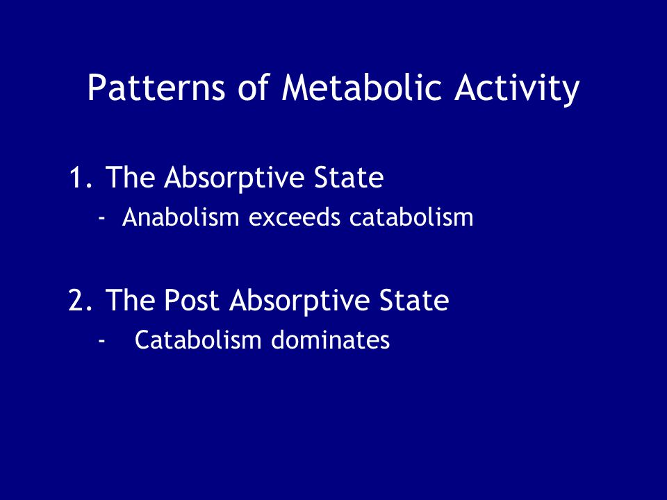 Patterns of Metabolic Activity
