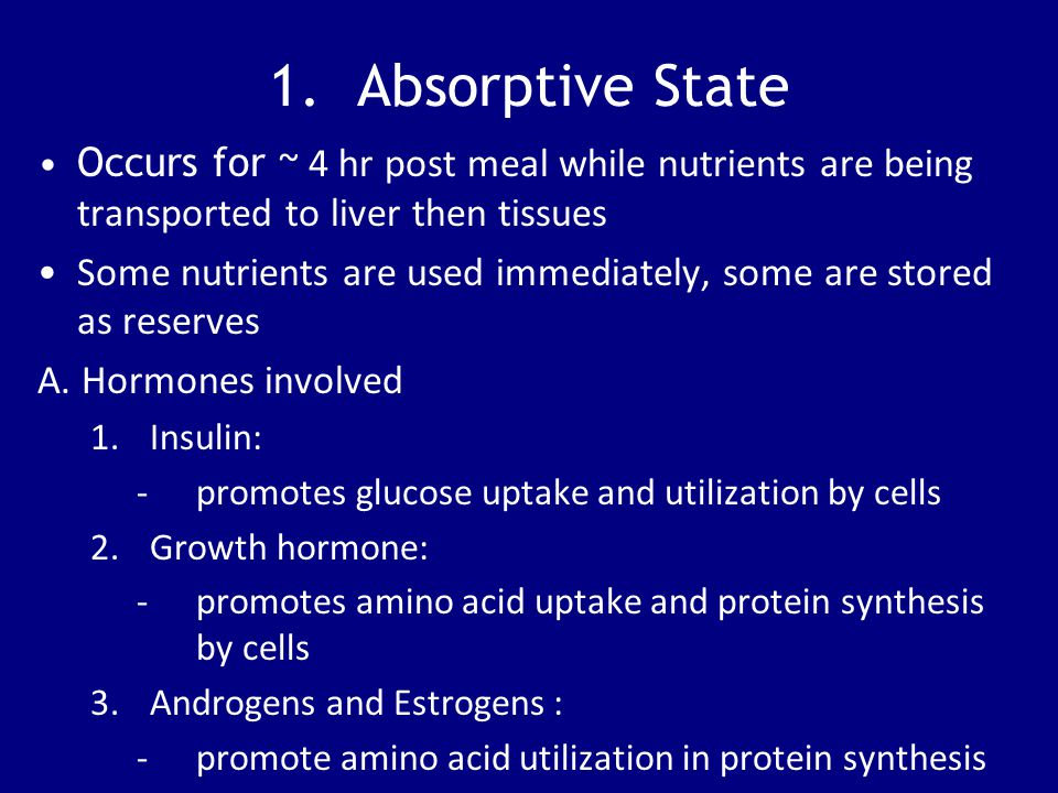 1. Absorptive State Occurs for ~ 4 hr post meal while nutrients are being transported to liver then tissues.