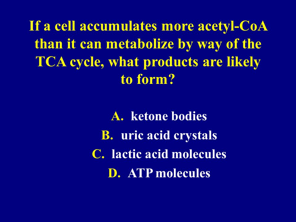 If a cell accumulates more acetyl-CoA than it can metabolize by way of the TCA cycle, what products are likely to form