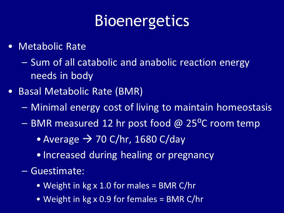 Bioenergetics Metabolic Rate