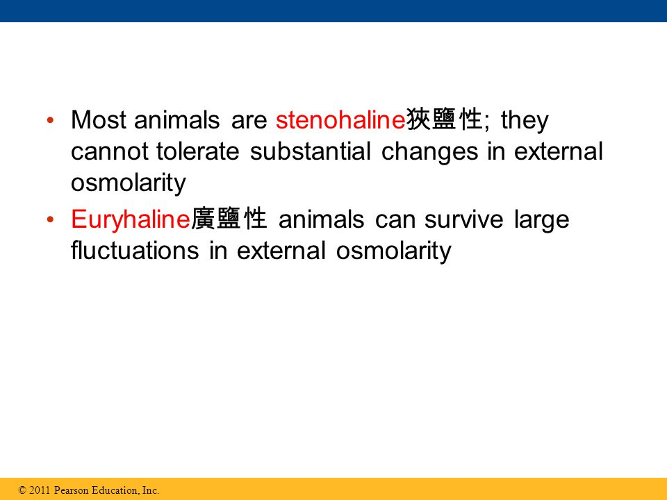 Most animals are stenohaline狹鹽性; they cannot tolerate substantial changes in external osmolarity