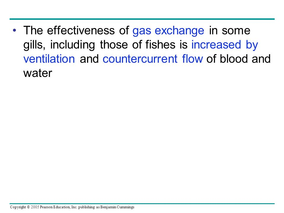 The effectiveness of gas exchange in some gills, including those of fishes is increased by ventilation and countercurrent flow of blood and water